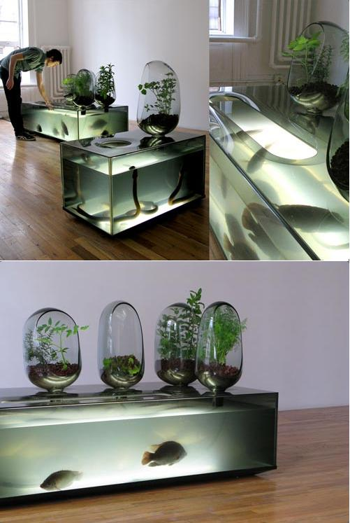 Mathieu Lehanneur ,  Local River.    Fish tank designed for restaurants and homes to keep feed fish until eaten. It replicates the atmosphere of a river, in which plant roots naturally eliminate toxic chemicals.