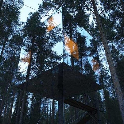 Tree Hotel by Tham & Videgård Arkitekter (via Dezeen )