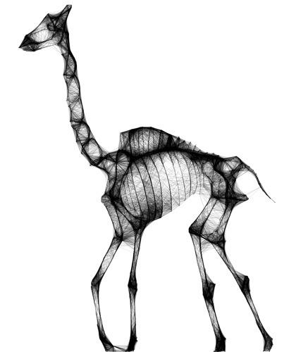 giraffe (by  xstuntkidx )