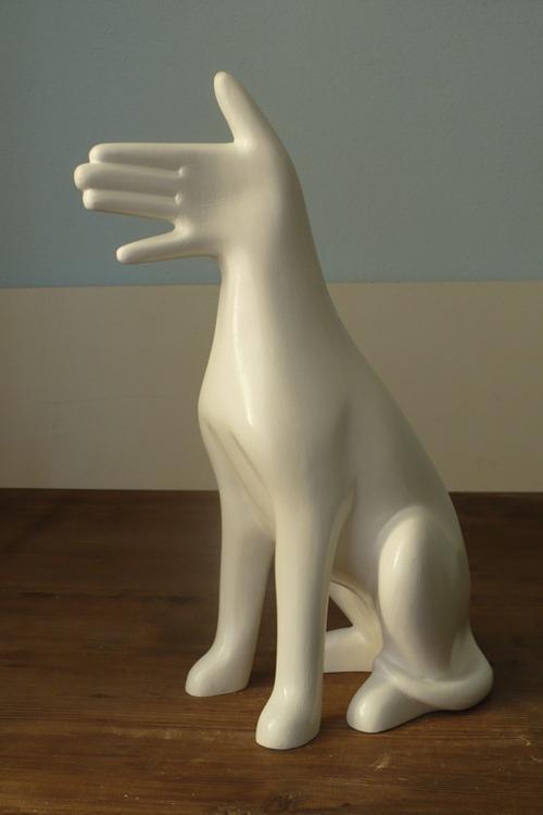 Roman Olsanik  .  Jack Hand Terrier.
