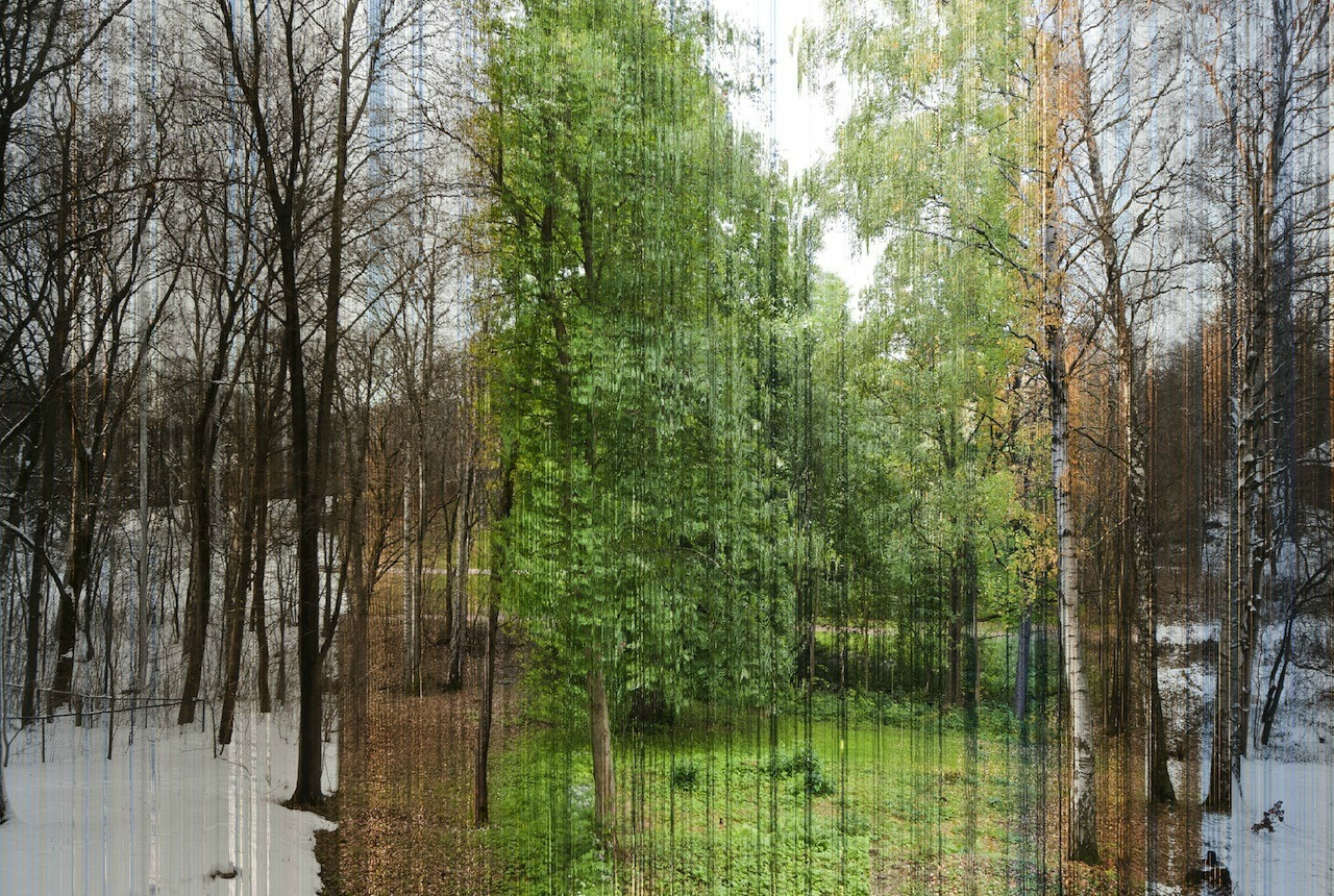 a picture in 365 slices. each slice is one day of the year.