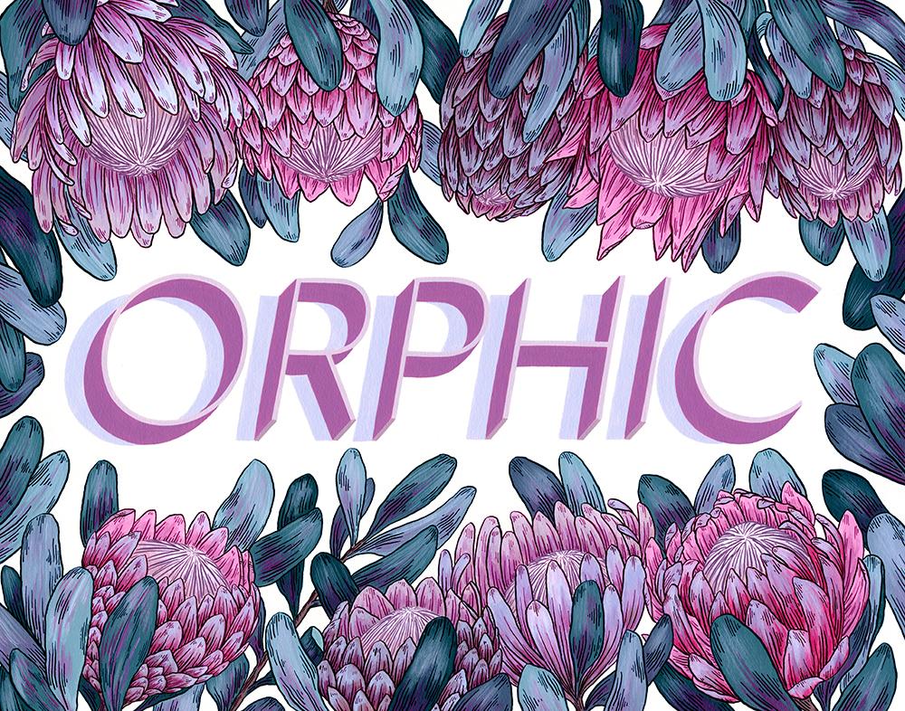 OrphicWebsiteLarge.jpg