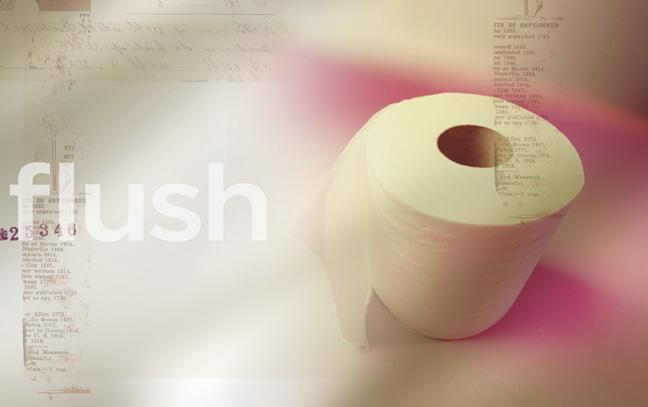 Flush8.jpg