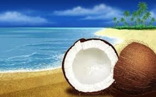 coconut.jpeg