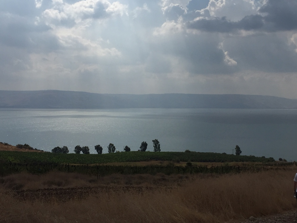 Day 6: Nazareth Sunrise, Jordan River, Mount of Beatitudes, Sea of Galilea, Loaves & Fishes Church, Jacob's Well