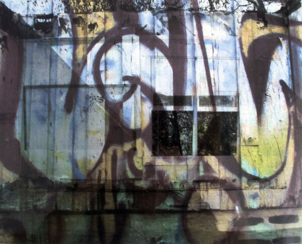 """""""Looking Out"""" 2011   solvent transfer and laser print  variable sizes available"""