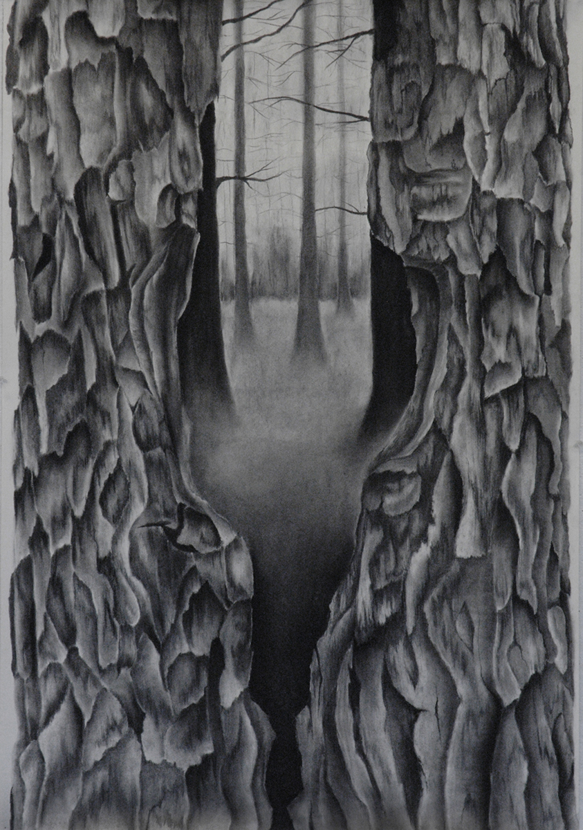 "Drawing I - charcoal on paper, 24""x36"""