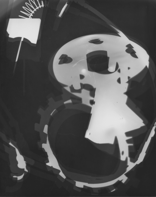 X-RAY II   2013 PHOTOGRAM