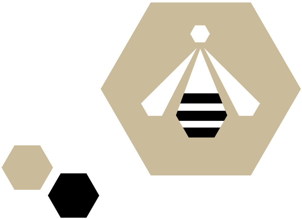July 24: Hexagons and bees!