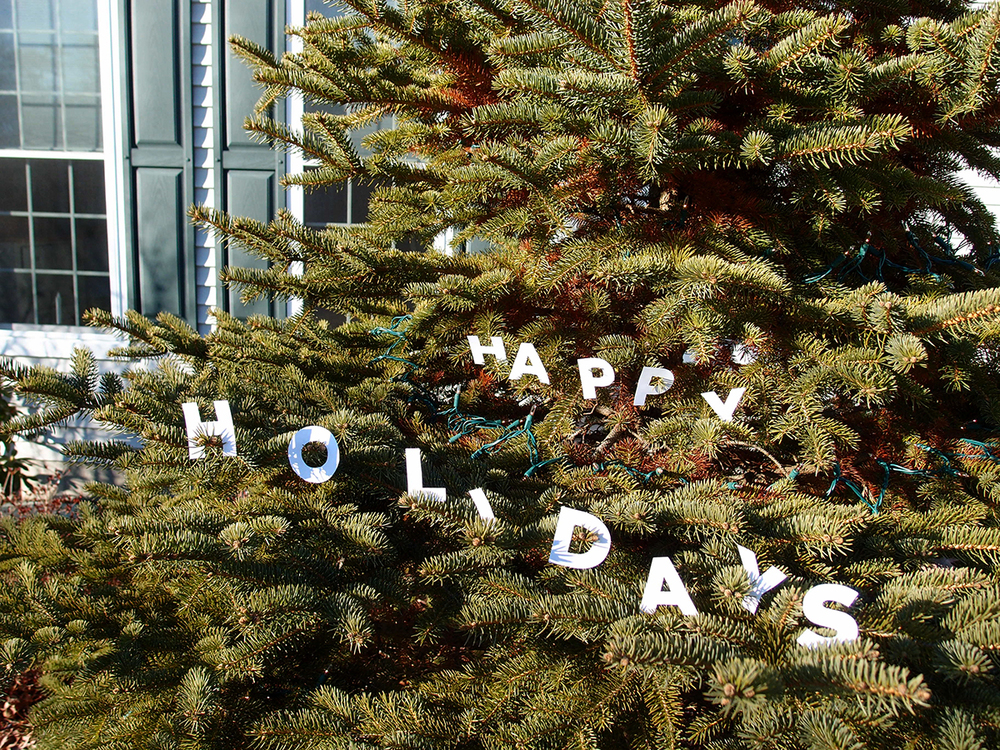 December 25: Paper letters made their way into the tree. Happy Holidays everyone!