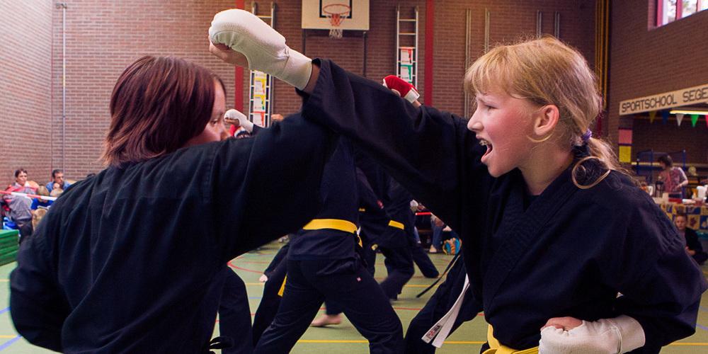 Shaolin Kempo Segers Slider-10.jpg