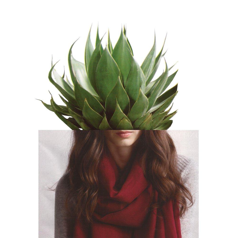 plant_hair (1).jpg