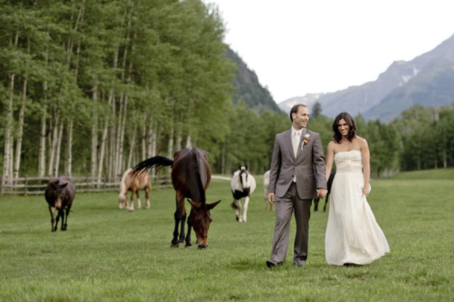 Aspen Green Pasture