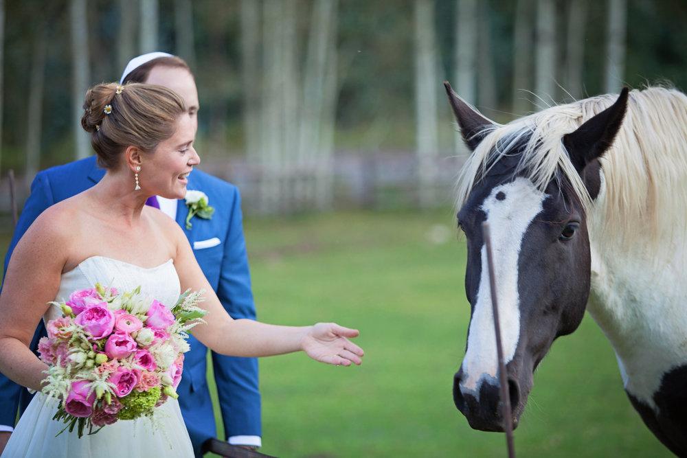 Lisa and Evan-the couple-0060.jpg