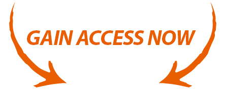 Gain Access Now.jpg