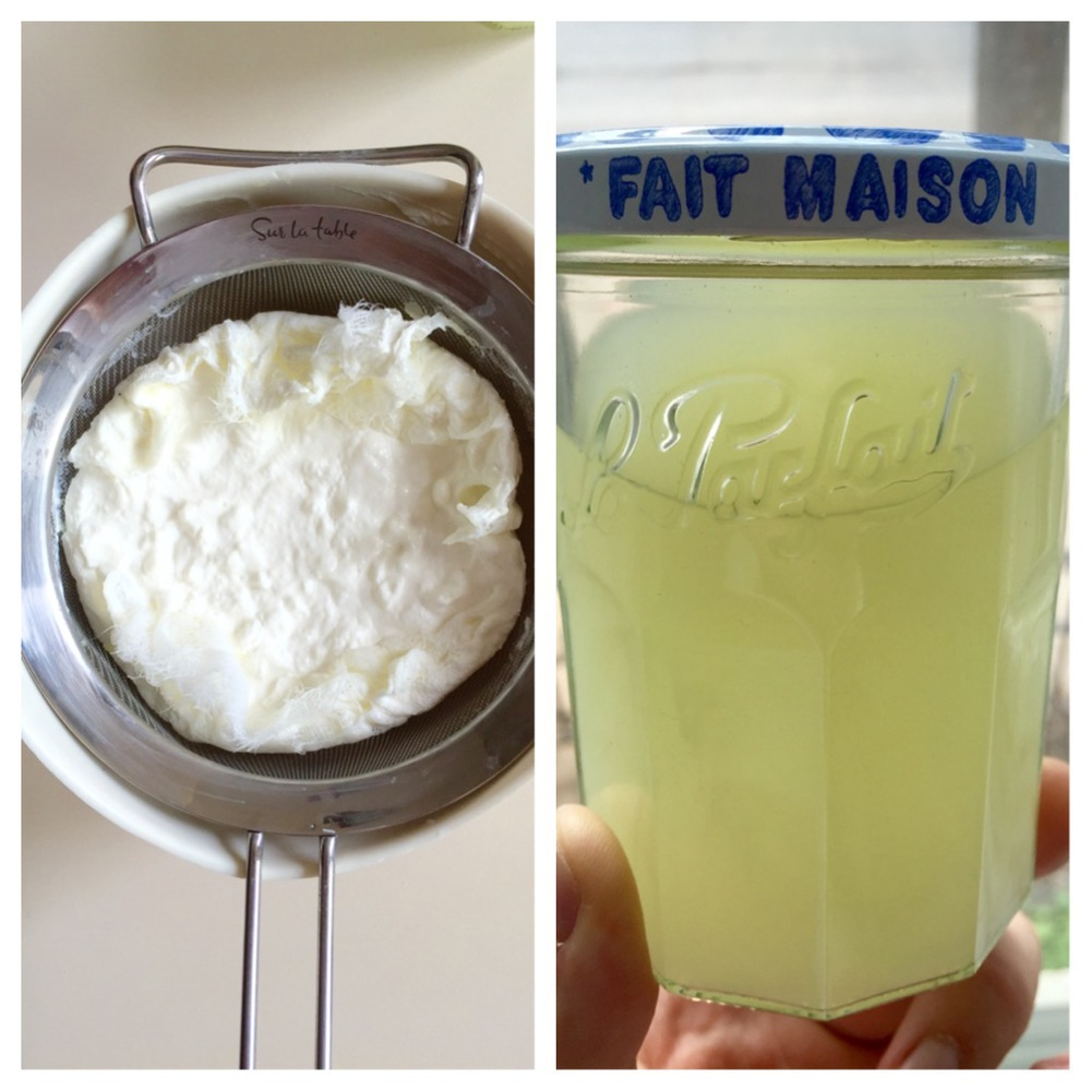 foodseum lactic acid