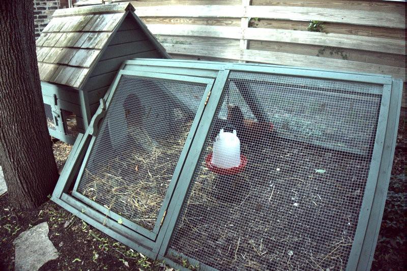 foodseum chicken coop rick bayless garden