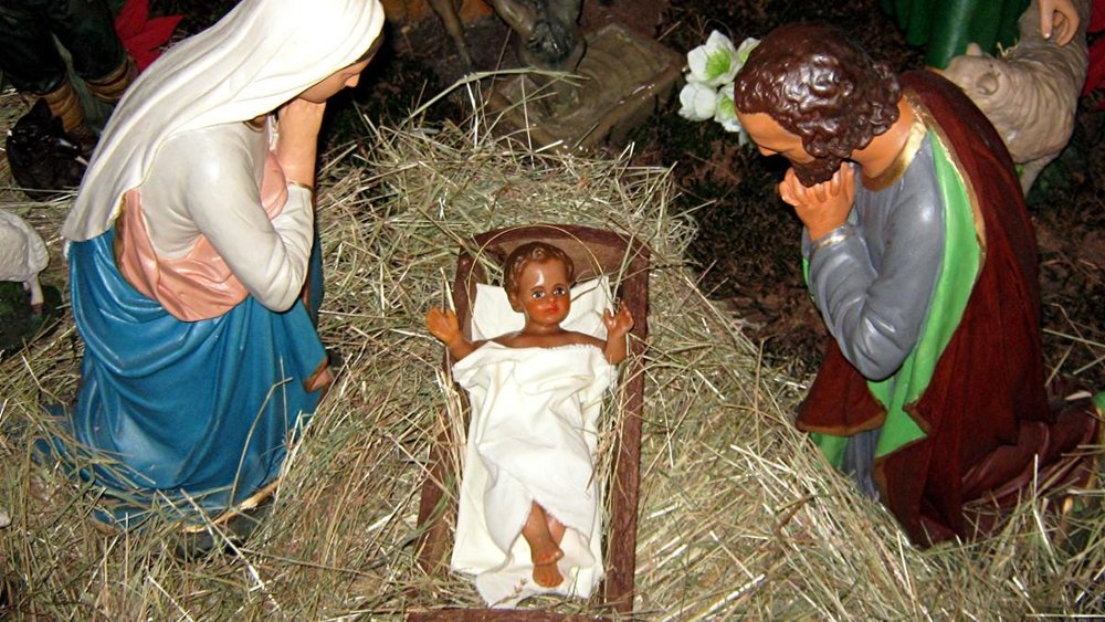 the-science-behind-the-virgin-birth-1450733870.jpg