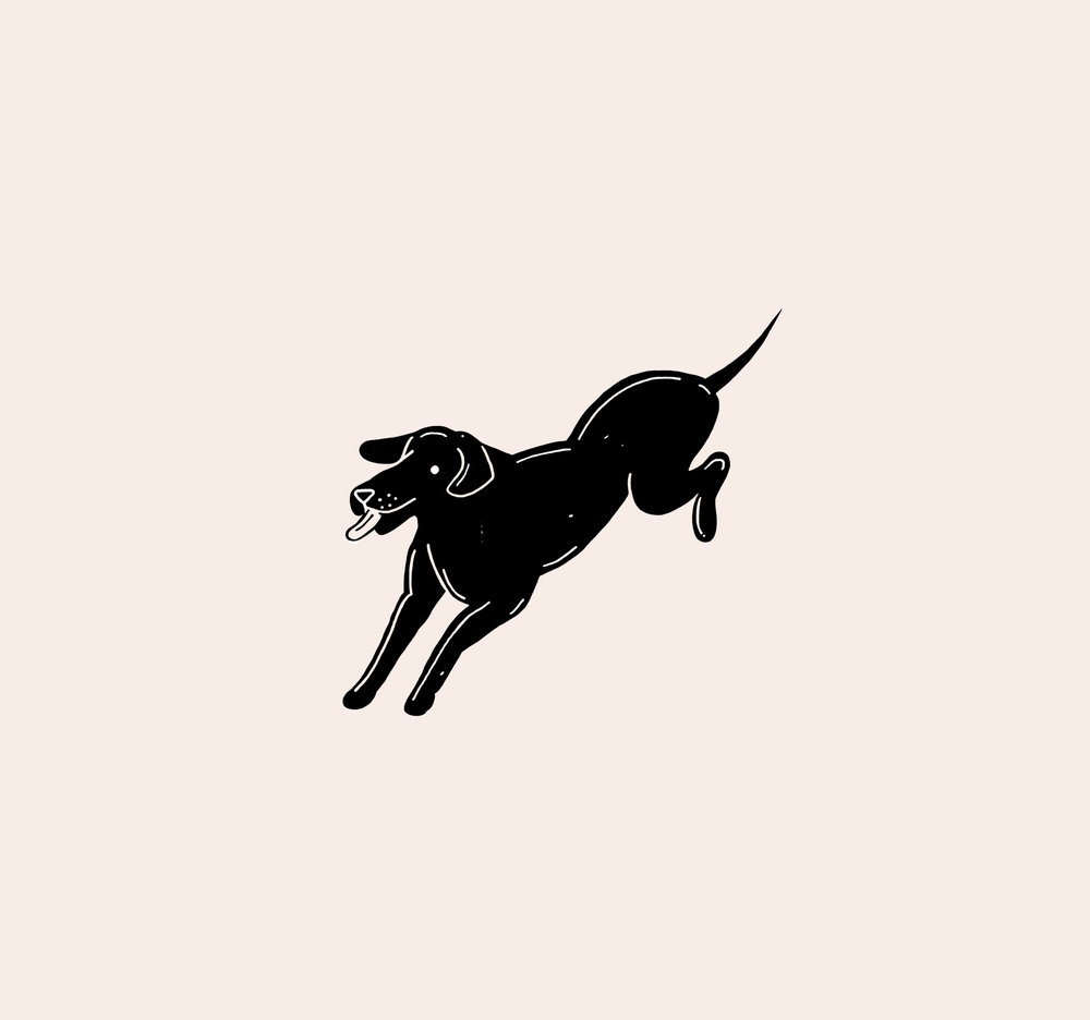 dogboy.jpg
