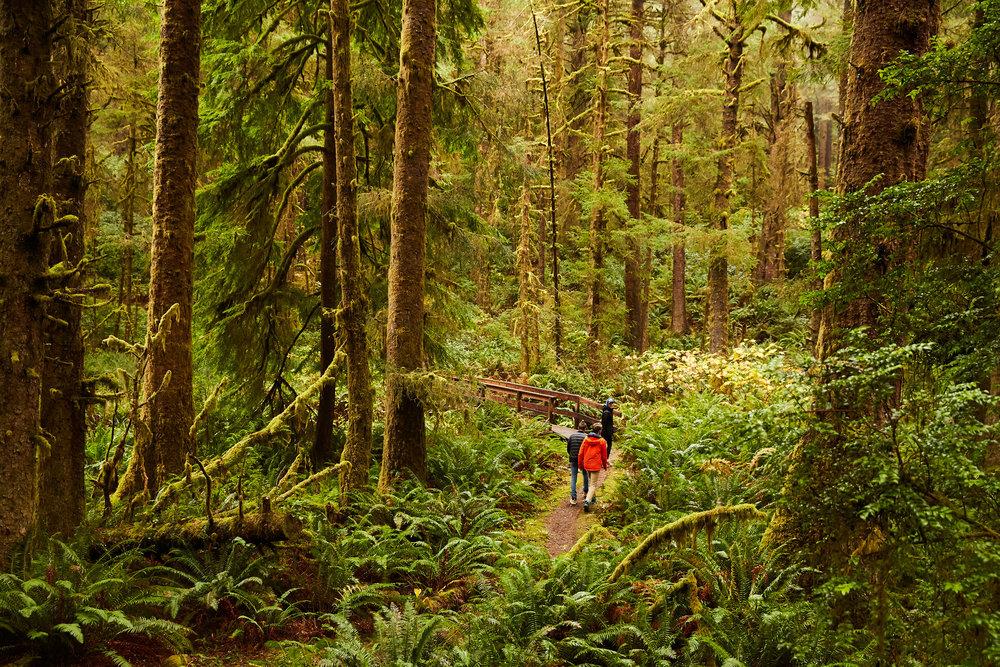 OregonFall18_1050.jpg