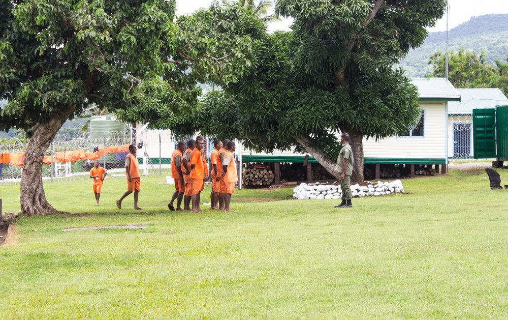 Muster-Taveuni.jpg