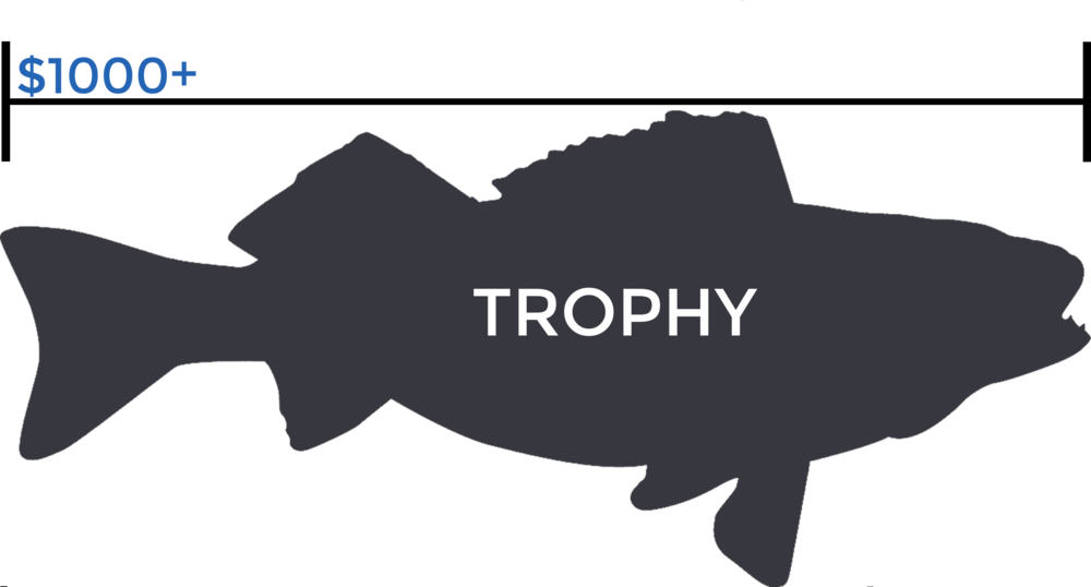 "The ""Trophy"" level is a donation of $1,000 or more and gains you or your business visibility on our   Partners   page where your logo can be prominently displayed."
