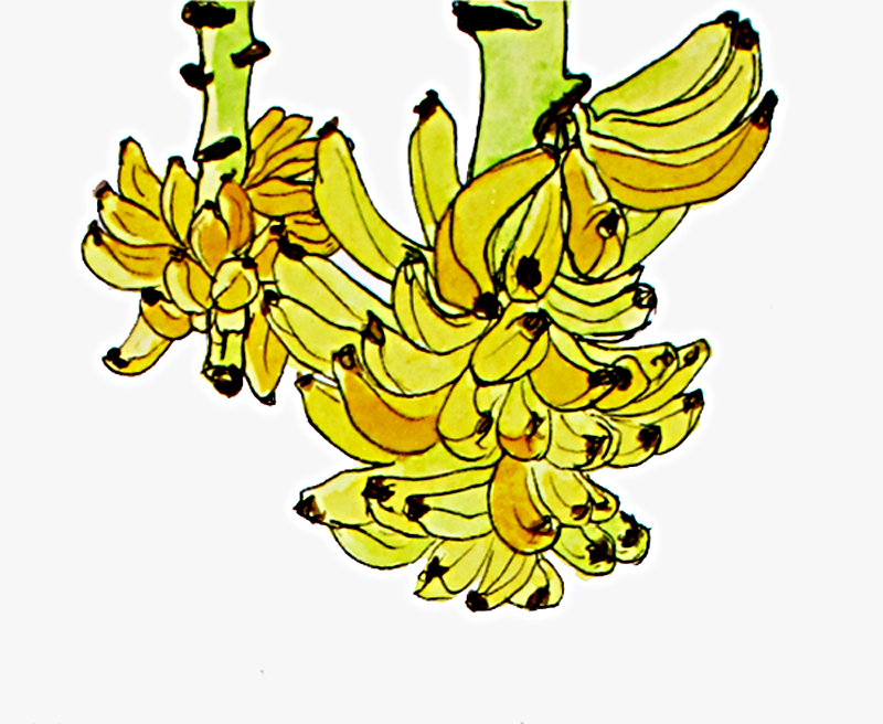 bananas detail.jpg