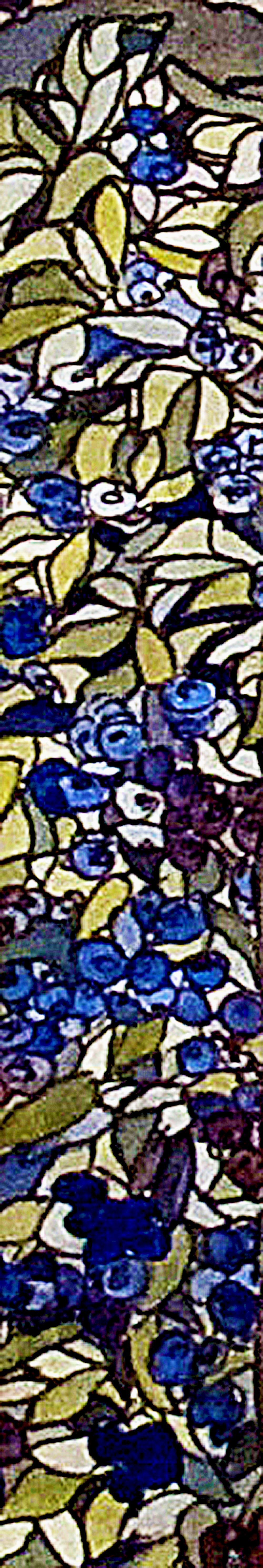 blueberry detail.jpg