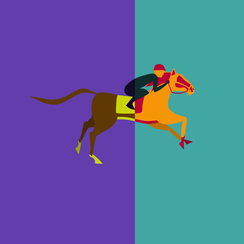 Horse Racing -Transition