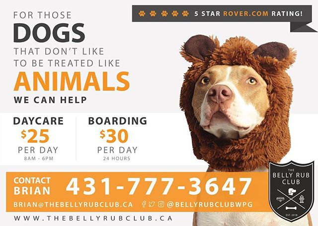 Dog boarding and Doggy daycare at is finest. We only have up to 5 dogs maximum so your dog gets lots of attention and of course, belly rubs. Ask us for details. @bellyrubclubwpg #winnipeg #dogs #doggydaycare #dogboarding