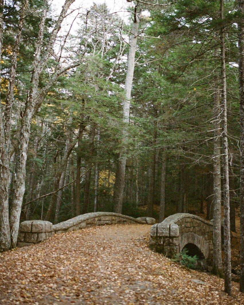Maine Book6.jpg