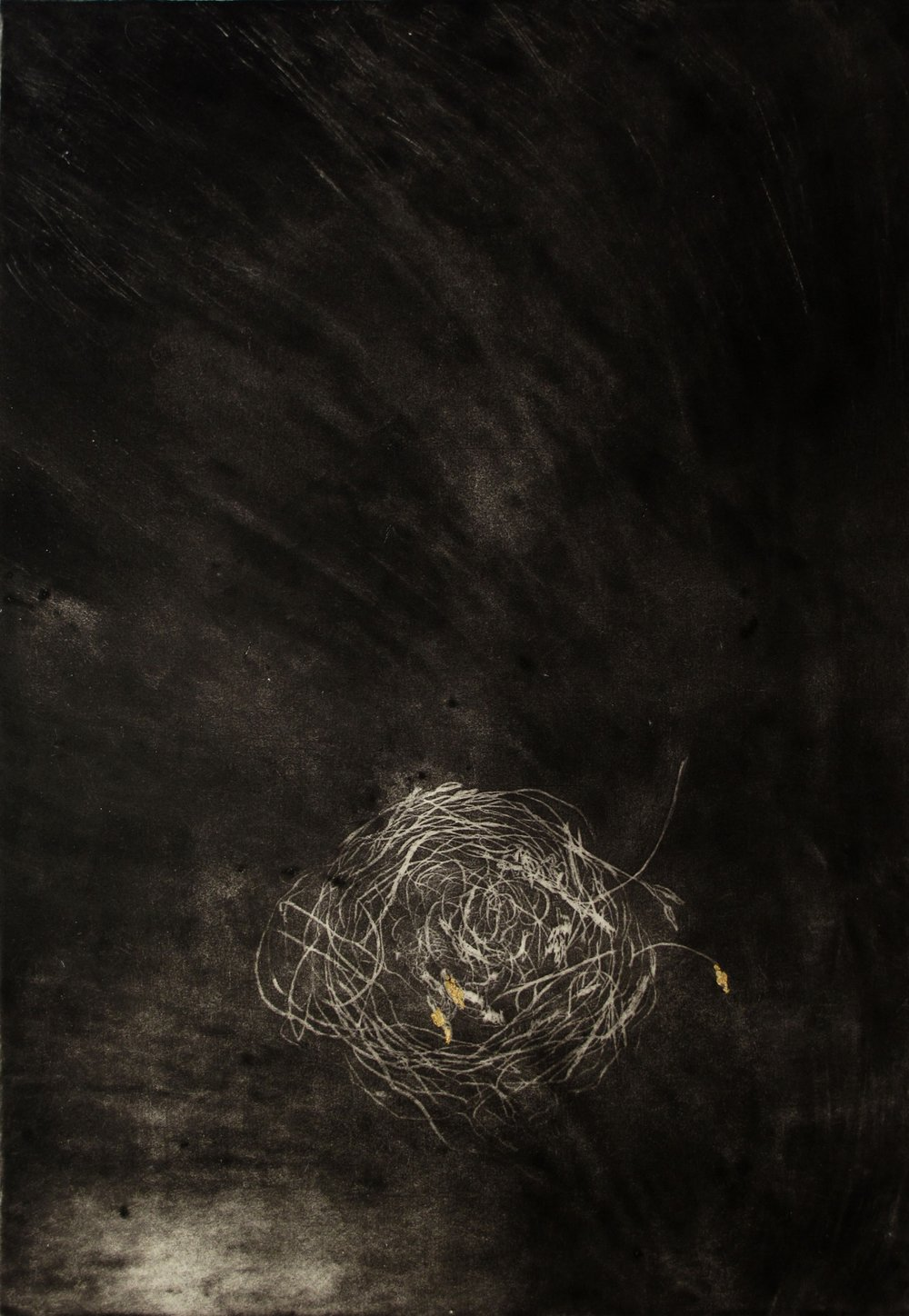 Fragility I  Etching with Gold Leaf by Gina McDonald