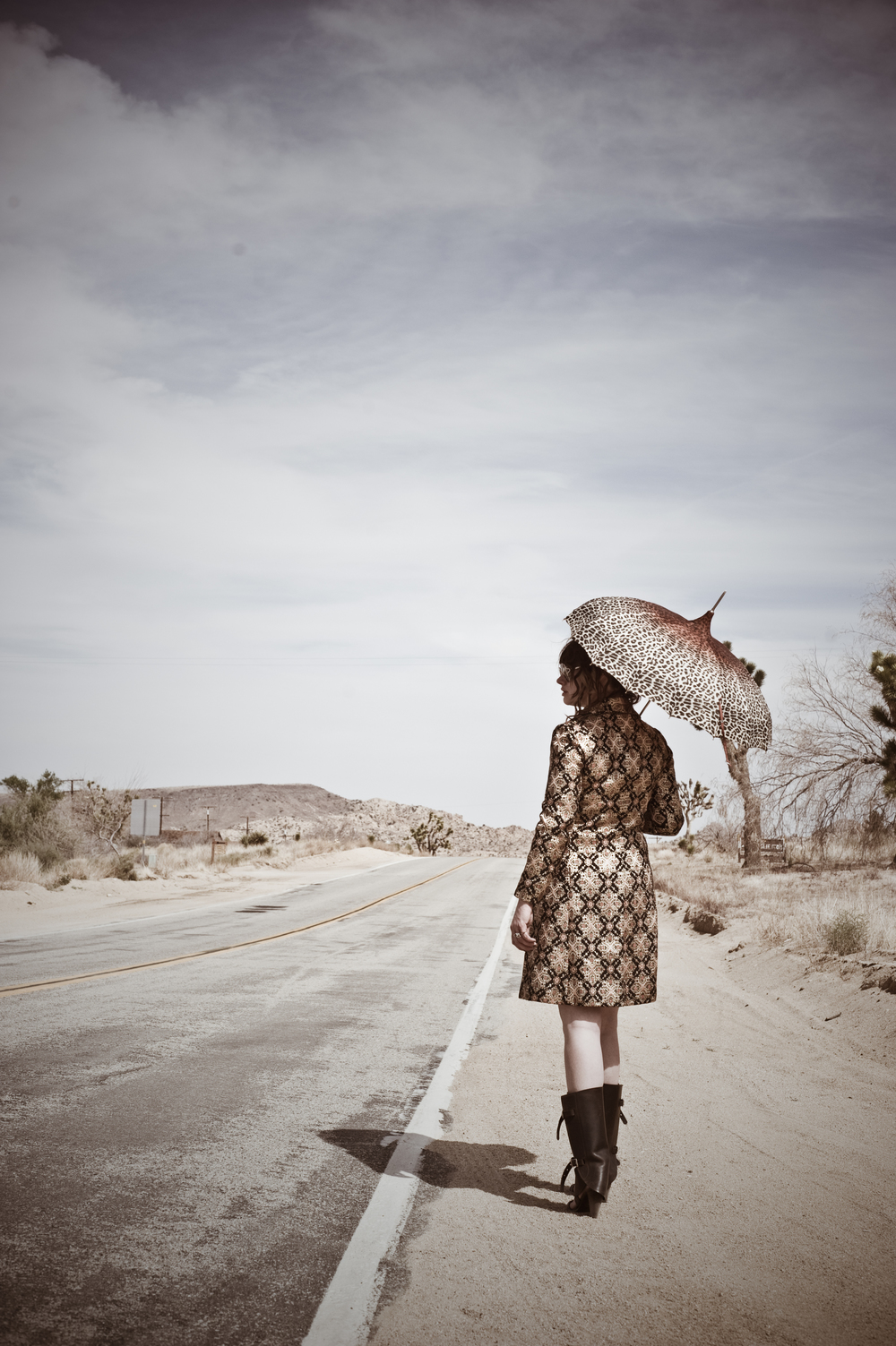 Joshua Tree  Photographer - Bryony Shearmur