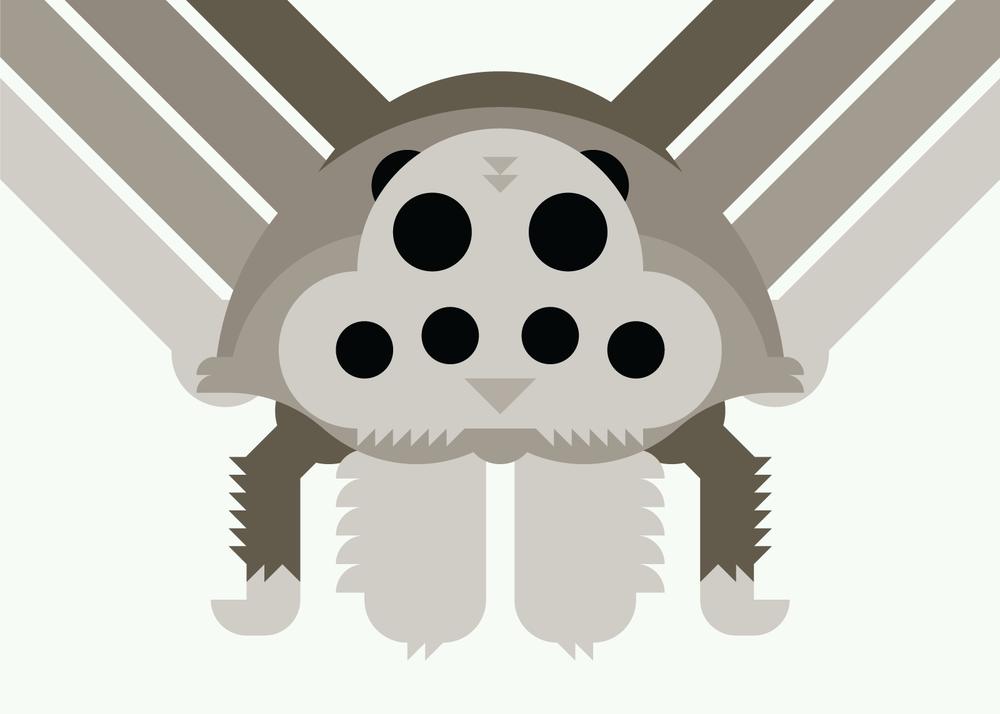 1-WolfSpider.png