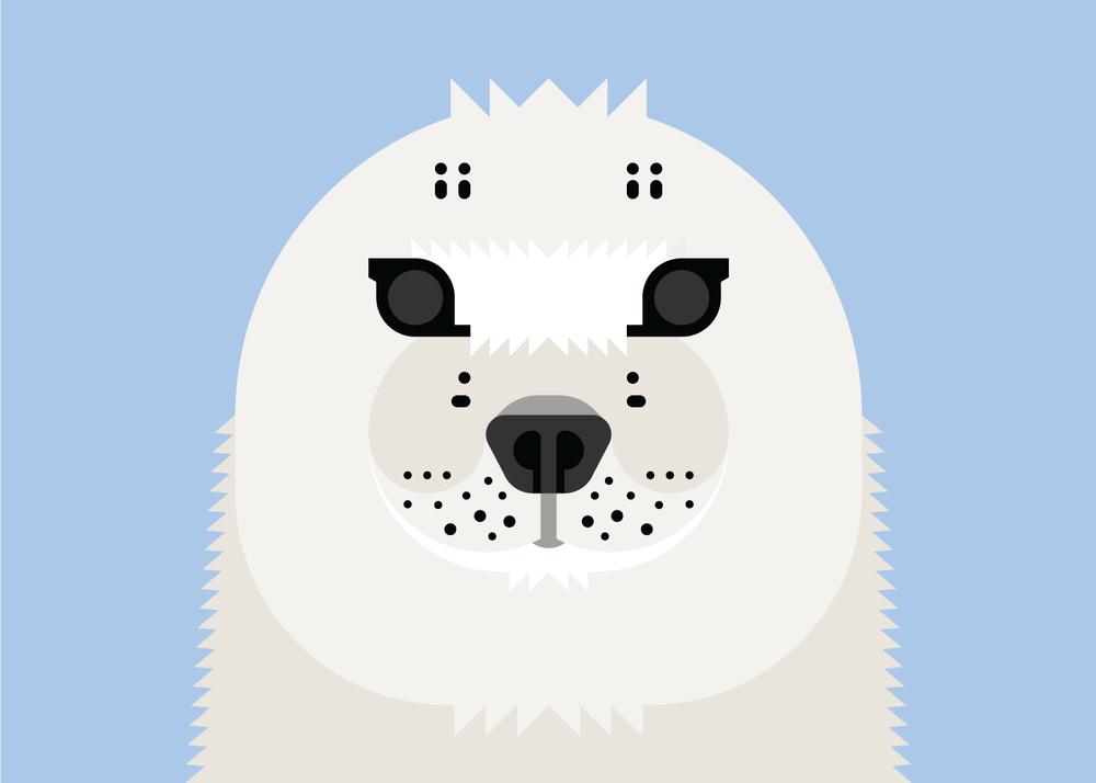 2-Seal.png