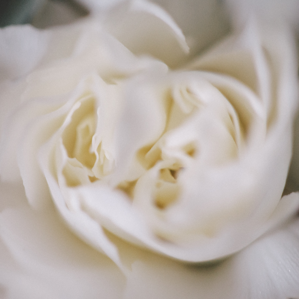 DanijelaWeddings-flowers006.jpg