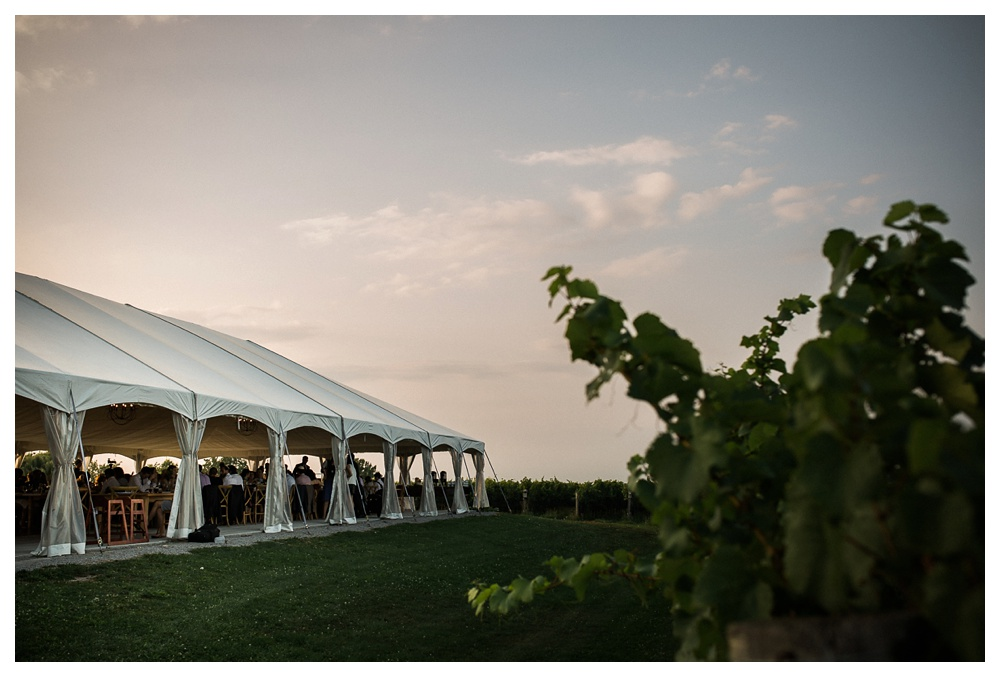 Ravine Winery, wedding, outdoor wedding, romantic, Niagara-on-the-lake, Blush and Bowtie, wedding reception,