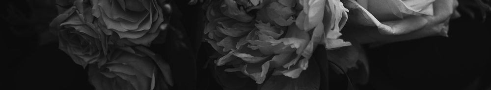 flowers, black and white, romantic