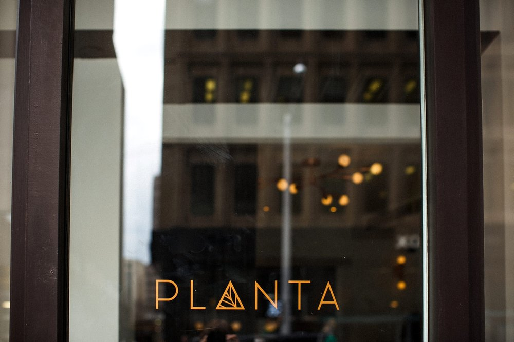Planta-restaurant-wedding-Toronto-city-hall-hip-alternative-photos-danijelaweddings-084.JPG