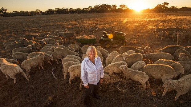 Life changing: Former nurse and now Bendigo farmer Sandra Sharman is free of pain following stem cell treatment on her knee. Picture Meredith O'Shea (used under license from the photographer).