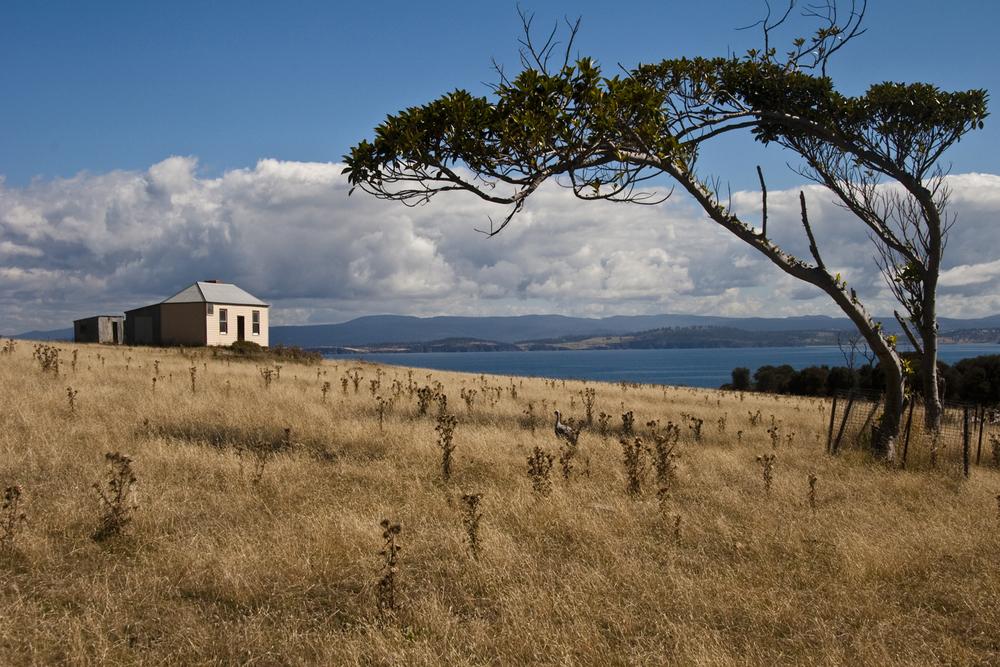Maria Island Cottage.jpg