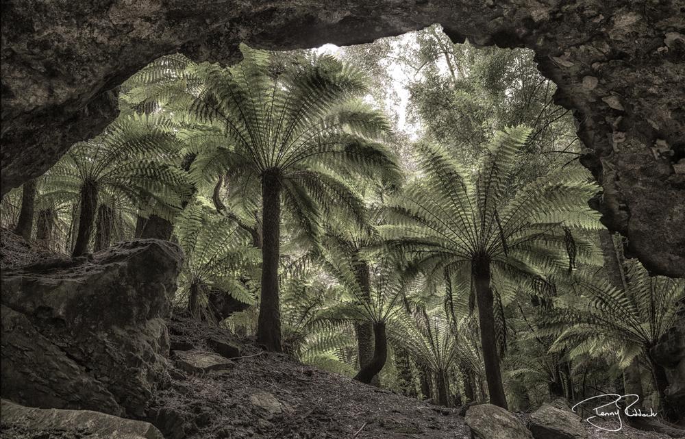 Trowutta Arch Tasmania Penny Riddoch.jpg