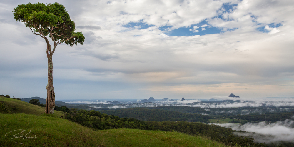 Glasshouse Mountains Penny Riddoch-3.jpg