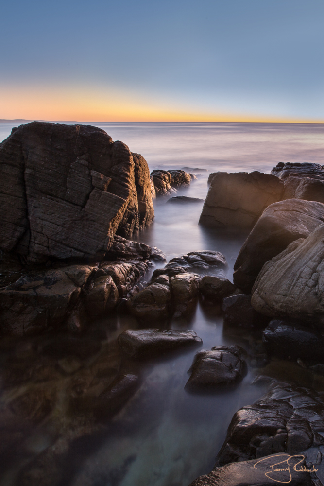 Noosa National Park Penny Riddoch-6.jpg