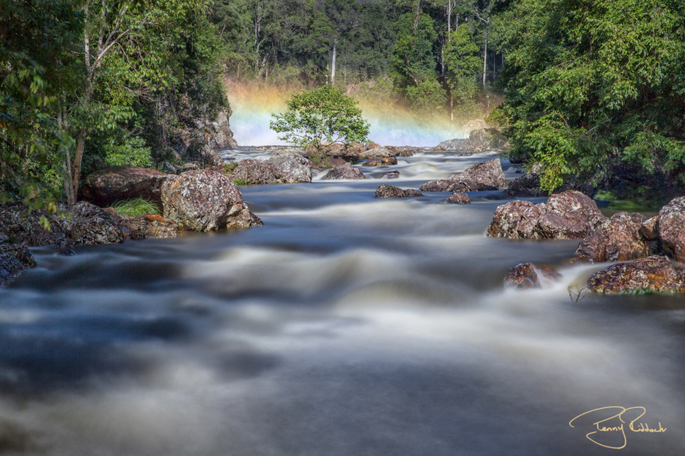 The Obi Obi River Penny Riddoch-5.jpg