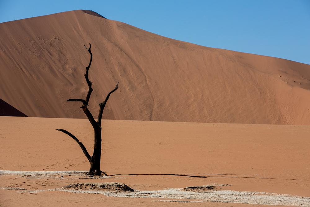 D Sossusvlei Namibia Penny Riddoch.jpg