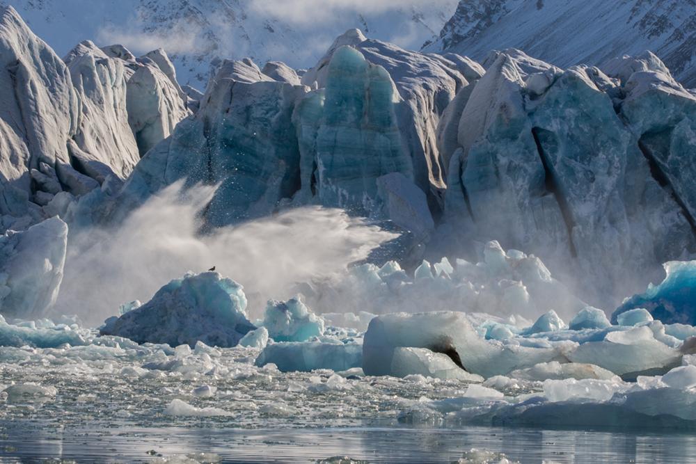 E The calving Greenland Penny Riddoch.jpg