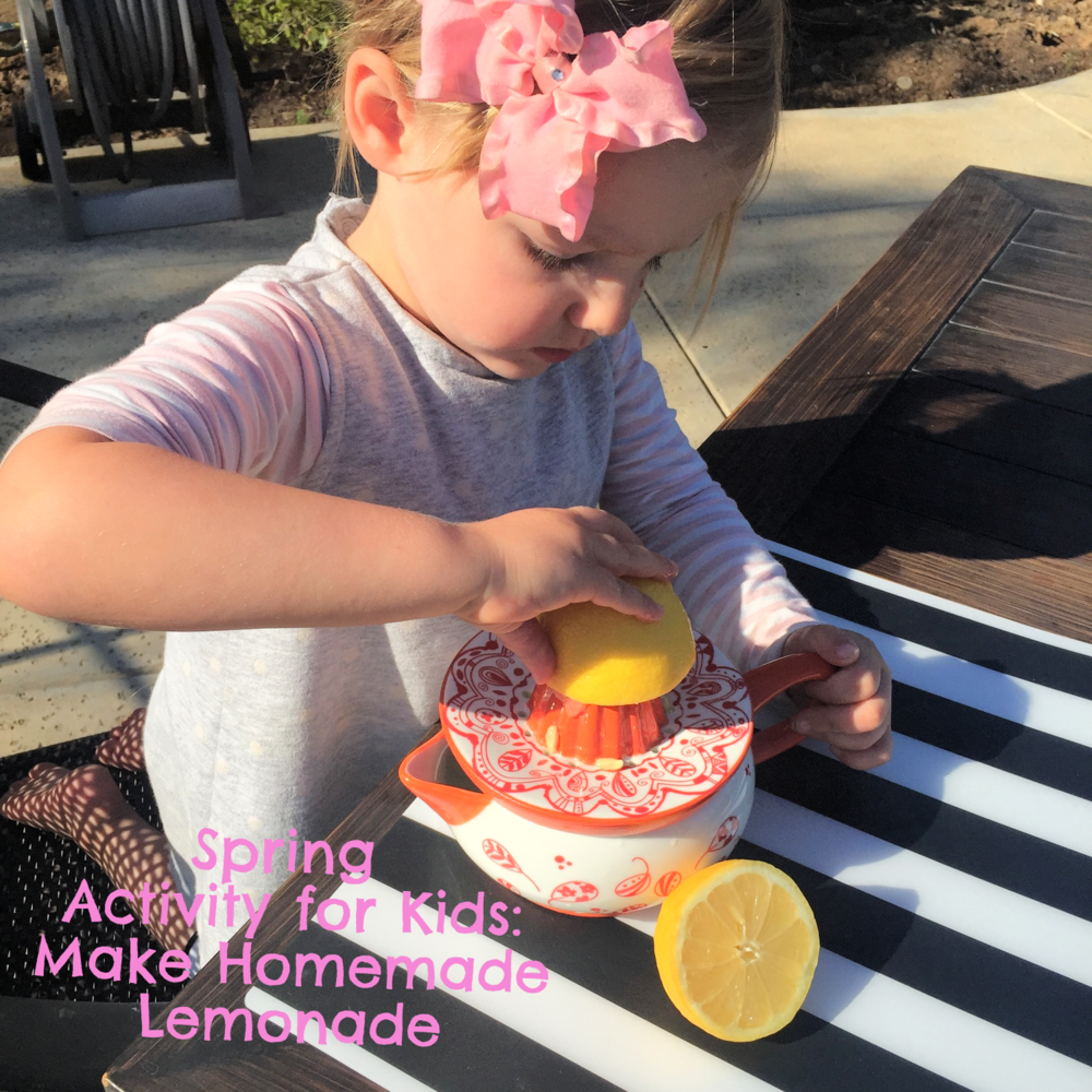 Great activity for kids, make homemade lemonade. www.ChefShayna.com