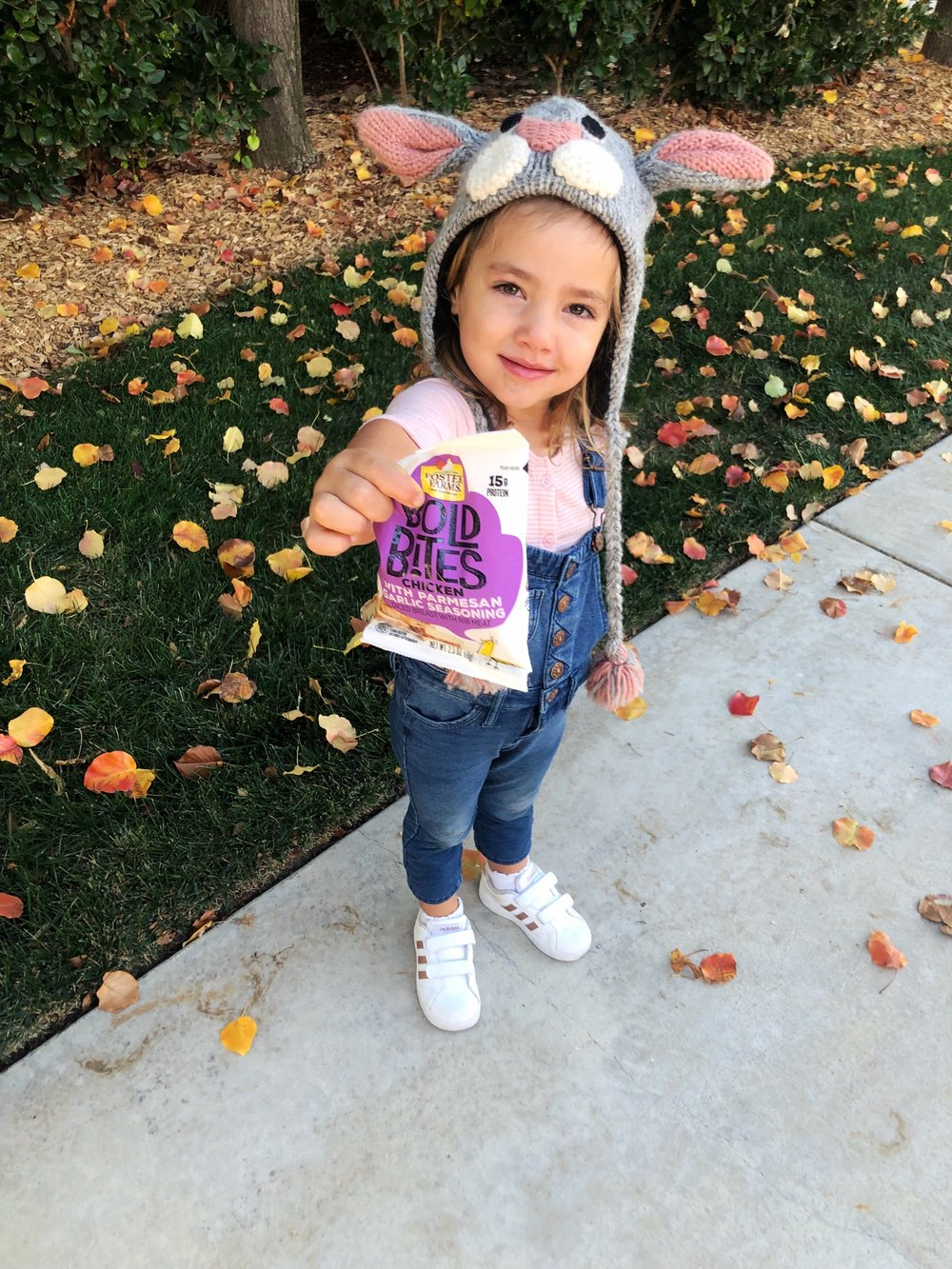Bold Bites- Convenient and healthy snacks for families on the go. www.ChefShayna.com