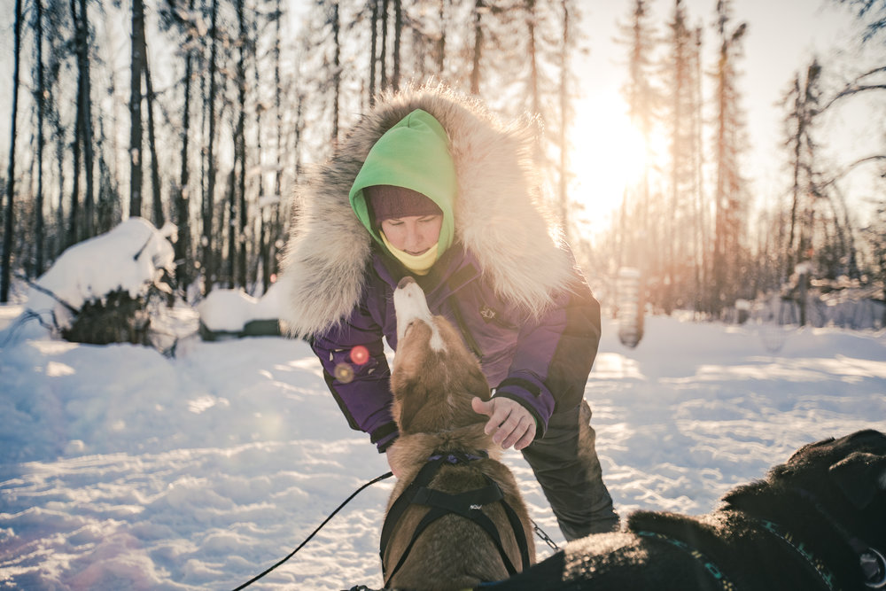 Mary Helwig, dog musher, out for a training session [Willow, Alaska]